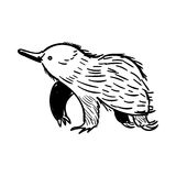 Australian animal Echidna in doodle style. Vector illustration. Vector illustration of handdrawn Australian animal Echidna in doodle style vector illustration