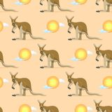 Australian animal kangaroo seamless pattern vector marsupial wallaby in Australia and textured animalistic background. With sunrise on landscape or backdrop Stock Image