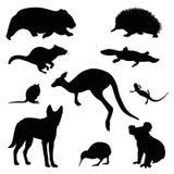 Australian animal vector set. Isolated on white Stock Photos