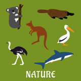 Australian animals and birds flat icons. Australian native animals and birds icons in flat style with platypus, emu, kangaroo, koala, pelican and white shark Stock Image