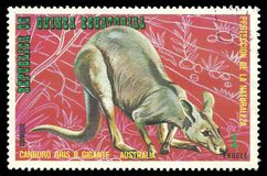 Australian Animals, Eastern Grey Kangaroo. Guinea Equatorial - stamp printed 1974, Multicolor Edition of offset printing with Topic Fauna and Mammals, Wildlife stock photo