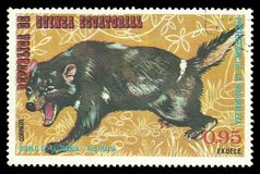 Australian Animals, Tasmanian Devil. Guinea Equatorial - stamp printed 1974, Multicolor Edition of offset printing with Topic Fauna and Mammals, Wildlife, Series royalty free stock photos