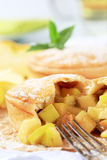 Australian apple pie Stock Images