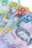 Australian bank notes. Five different denominations of Australian dollar notes Stock Photography
