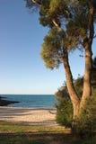 Australian Beach. Beach near Binalong Bay, Tasmania, Australia Royalty Free Stock Photos