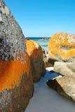 Australian Beach. Beach at Binalong Bay, Tasmania, Australia Stock Photos