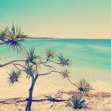 Australian Beach Instagram Style Stock Image