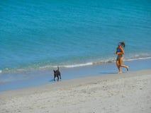 Australian beach jogger Stock Images