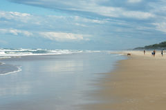 Australian Beach Royalty Free Stock Images