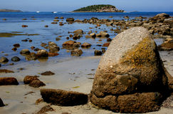 Australian beaches Stock Image