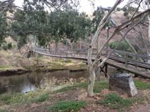 Australian Bush Bridge. Gum trees over a wooden suspension bridge in Old Noarlunga South Australia Royalty Free Stock Photography
