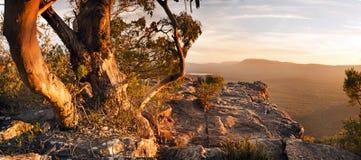 Australian Bush Landscape. Stunning Australian bush landscape scenic from a mountain top in the Grampians National Park Stock Photo