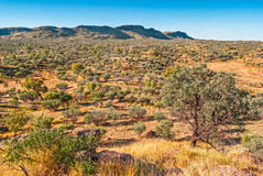 Australian bush, Northern Territory Stock Photography