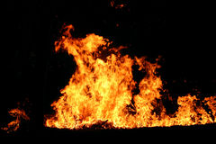 Australian bushfire. Big wildfire in Australia background stock photos