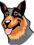 Australian Cattle Dog cartoon Stock Image