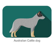 Australian Cattle Dog, dog standing flat icon design Royalty Free Stock Photo