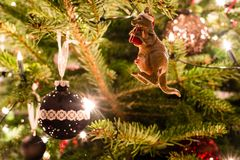 Australian Christmas Stock Photography
