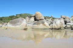 Free Australian Coast In Wilson Promontory National Park Royalty Free Stock Image - 70632836