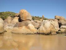 Free Australian Coast In Wilsons Promontory National Park Stock Photo - 70633420