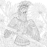 Australian cockatoo parrot in tropical jungle forest. Coloring page of australian cockatoo parrot in tropical jungle forest. Freehand sketch drawing for adult royalty free illustration