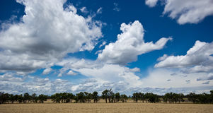 Australian Countryside Royalty Free Stock Photography