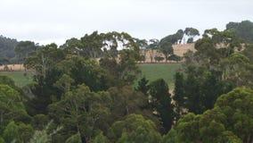 Australian bush countryside red earch UK. Australian countryside gum trees and red earth HD stock video footage