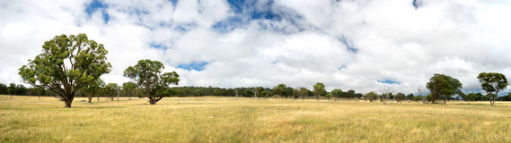 Australian Countryside Panorama Stock Photos