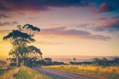 Australian countryside. Rural evening sunset in countryside in South Gippsland, Australia Royalty Free Stock Image