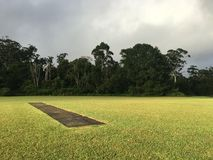 Australian cricket pitch Royalty Free Stock Photography