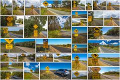 Australian crossing signs collage Royalty Free Stock Image