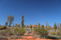 Australian desert Royalty Free Stock Images