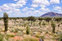 Australian desert Royalty Free Stock Photos