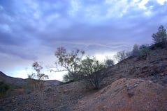 Australian desert. Desolate landscape of Australian desert royalty free stock images