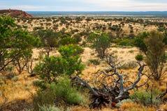 Australian desert (outback) stock image