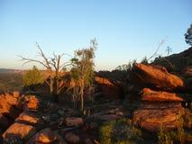 Australian desert Stock Images