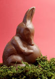 Australian Easter bunny rabbit alternative, a chocolate Bilby holding an egg - vertical Stock Photos