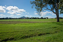 Australian farmland. Stock Photo