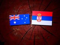 Australian flag with Serbian flag on a tree stump isolated. Australian flag with Serbian flag on a tree stump stock photography