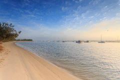Australian foggy morning at Broadwater Royalty Free Stock Image