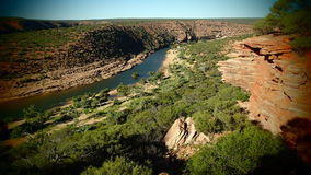 Australian Gorge with River. Wide Gorge cut by River in Western Australia lined with Gum Trees Stock Photography