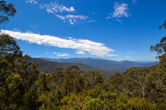 Australian landscape of native trees in snow capped mountains with blue sky.  Stock Photography