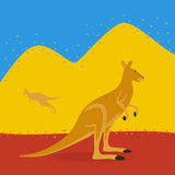 Australian Kangaroo Outdoors Royalty Free Stock Image
