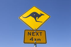 Australian kangaroo warning sign Royalty Free Stock Photo