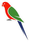 Australian King Parrot Royalty Free Stock Photos