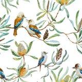 Australian kookaburra bird pattern Stock Photo