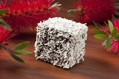 Australian Lamington Cake Royalty Free Stock Image