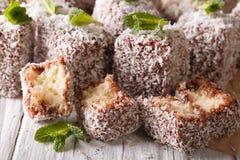 Australian Lamington cake with coconut macro. Horizontal Royalty Free Stock Photography