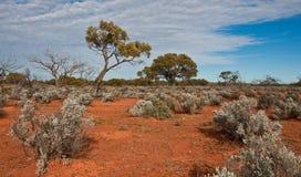 The australian landscape. South australia Royalty Free Stock Photos