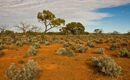 The australian landscape. South australia Royalty Free Stock Photography
