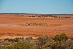 Australian landscape Stock Photography
